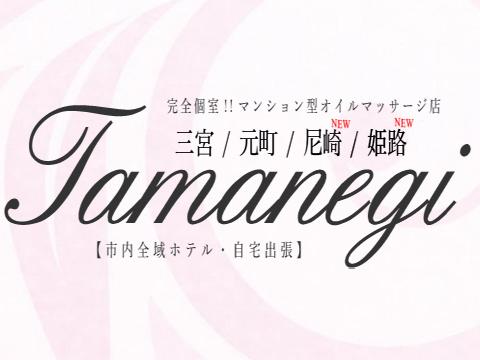 TAMANEGI 神戸・姫路